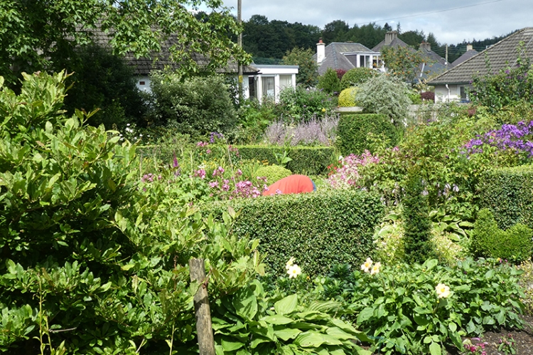 Mrs T in the garden