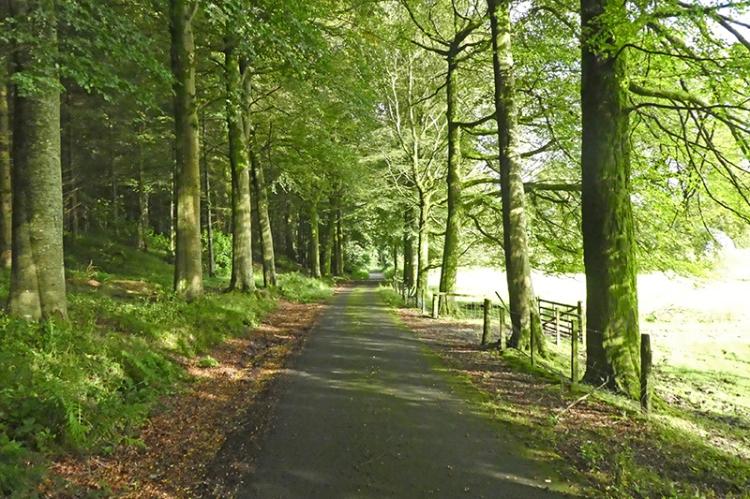 pheasant hatchery road