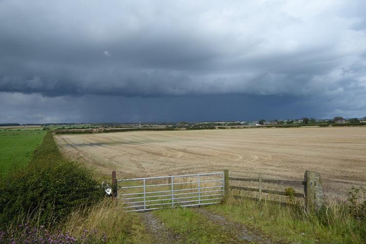 rainstorm off eastriggs