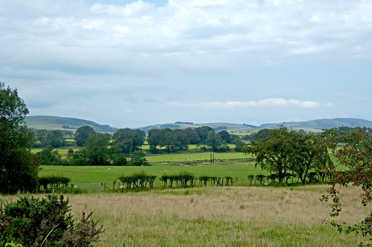 view from Gair road