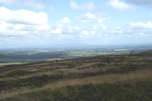 view of Solway plain from whita