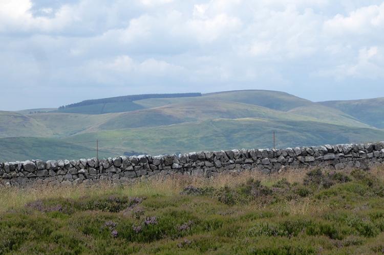 wall at white yett