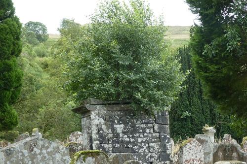 wauchope graveyard