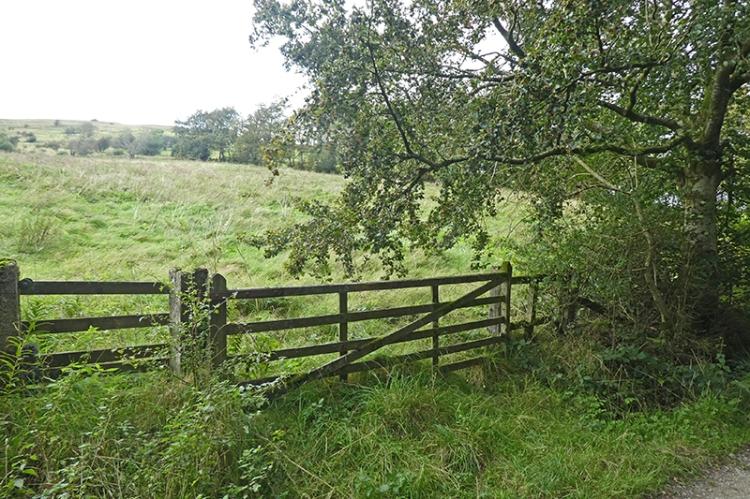 becks gate