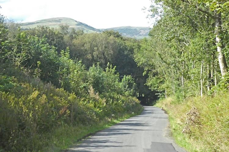 broomholm road