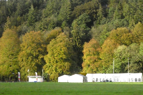cattle show tent and trees