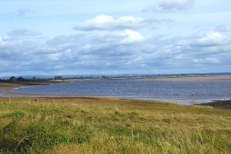 esk estuary browhouses
