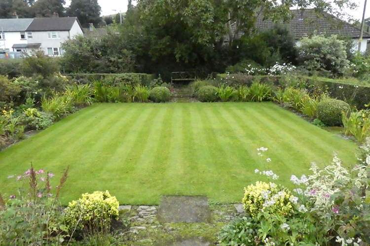 front lawn scarified