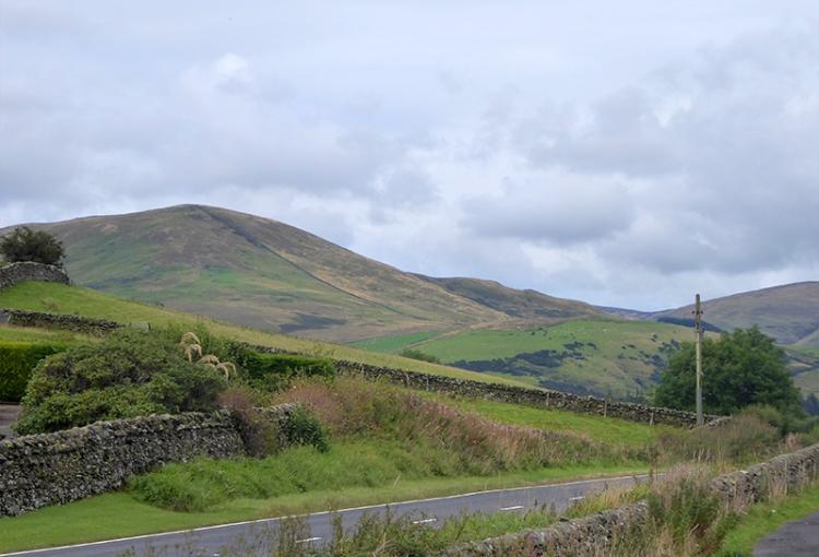 near Hoghill