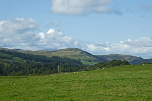 view from Bromholmshiels
