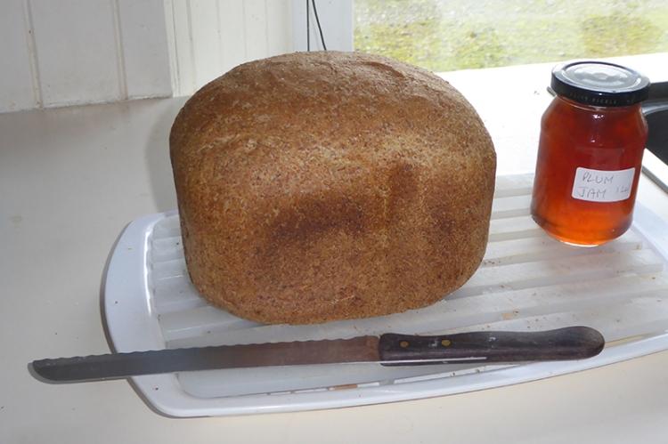 bread machine triumph
