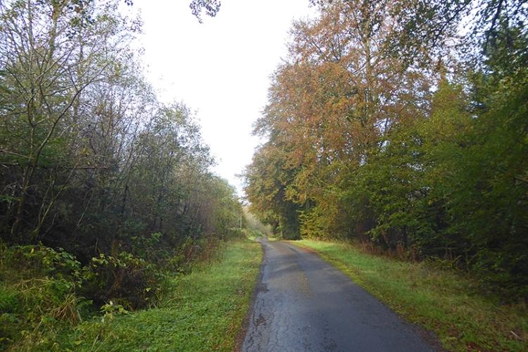 Castle O'er road