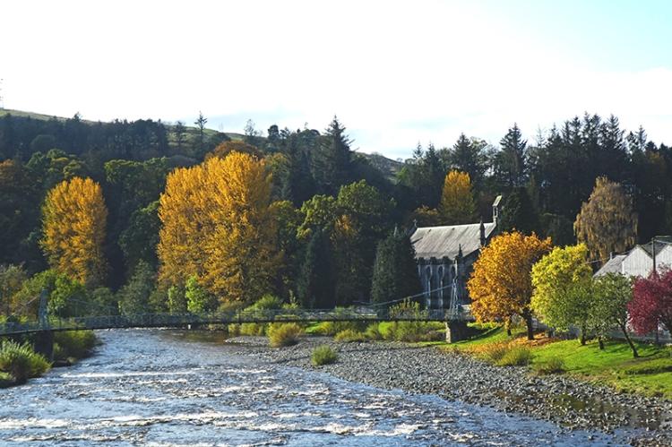 church and poplars from town bridge