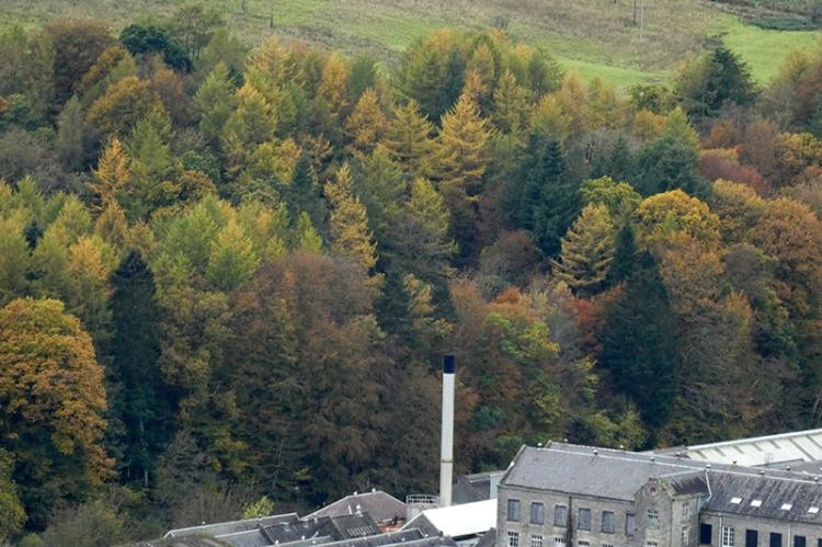 dye house chimney