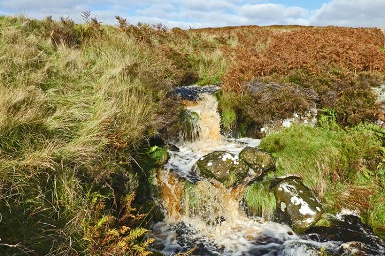 Langholm Moor burn tributary cascade