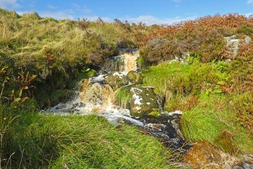 Langholm Moor burn tributary