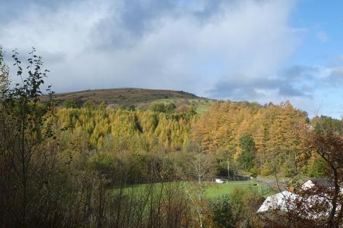 Meikleholm hill autumn