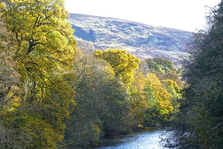 river esk from duchess bridge
