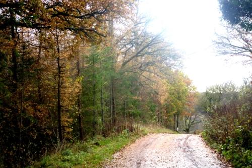 becks track november