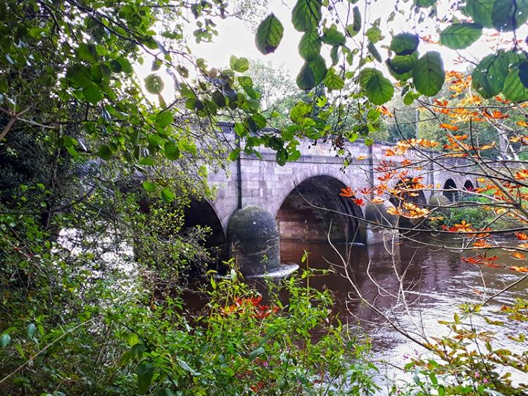 derwent bridge autumn