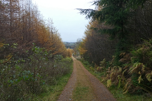 path to skipperscleuch