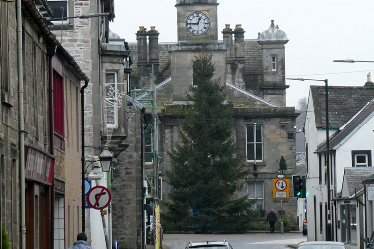 town christmas tree 2019