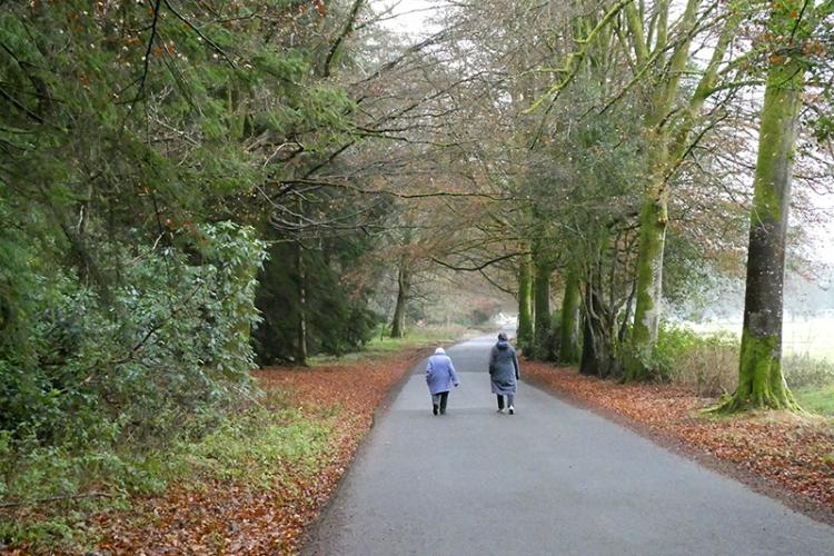 walkers on lodge walks