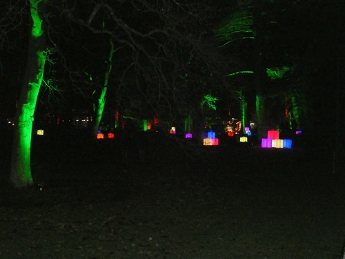 botanic lights 15