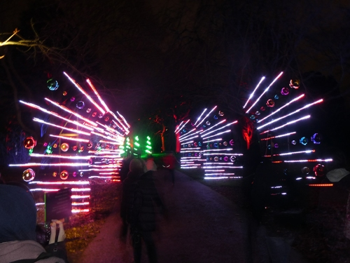 botanic lights 20