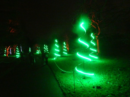 botanic lights 22