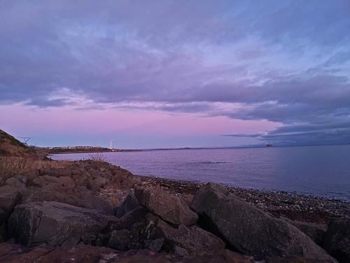 east wemms purple
