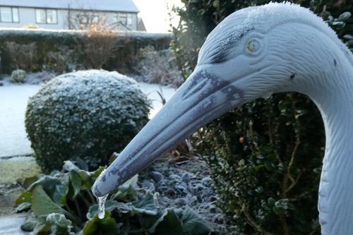 garden heron drip nose