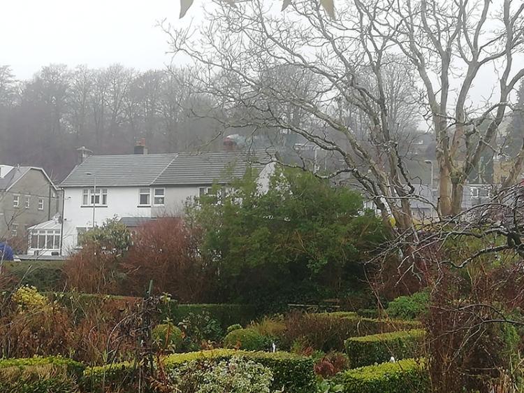 garden on a wet day