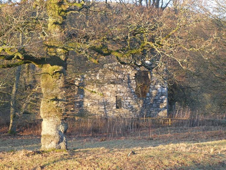 Langholm castle in sun
