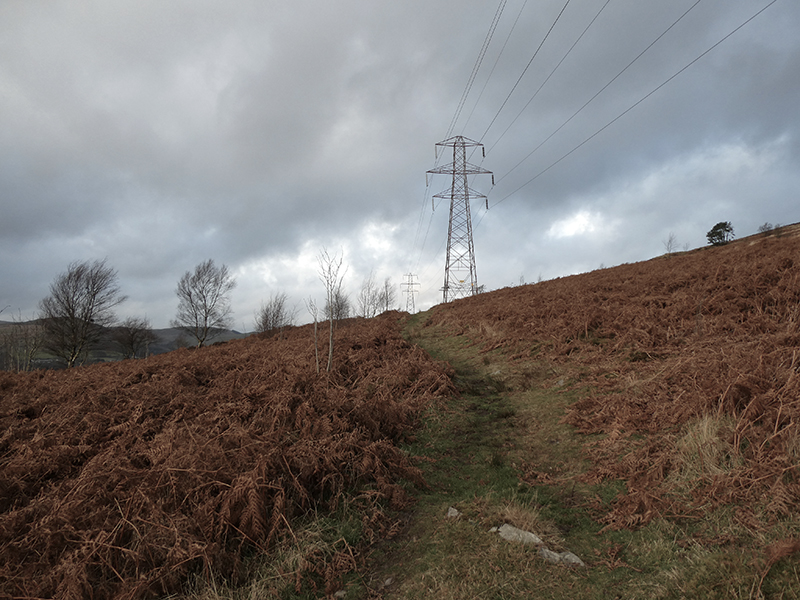 path to pylon