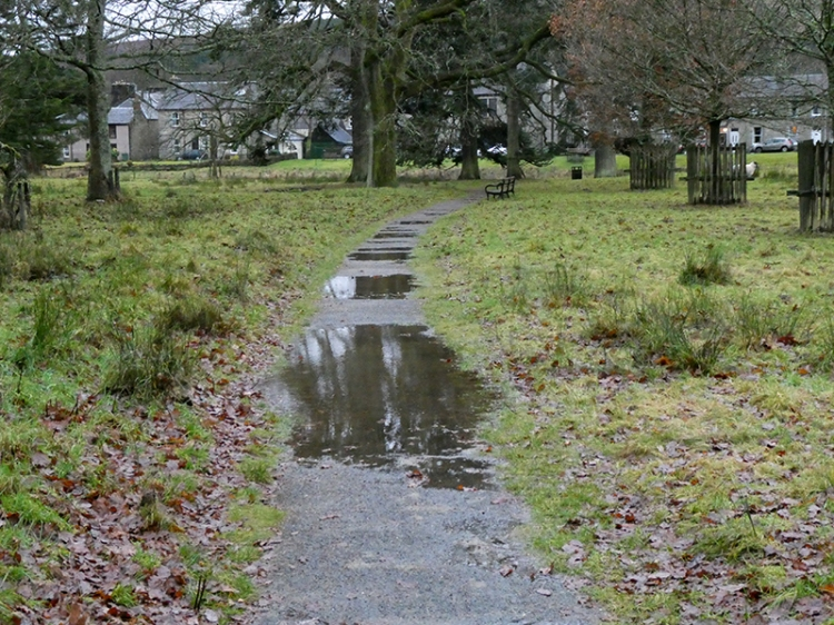 puddles on path