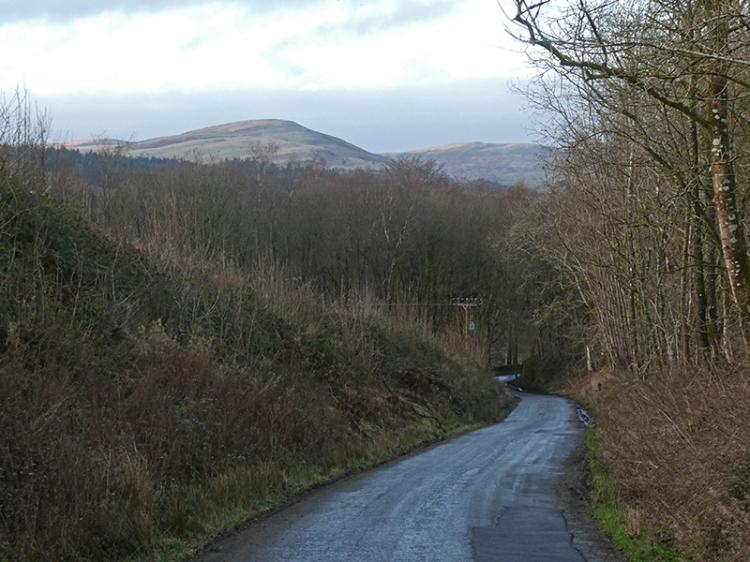 road above Broomholm