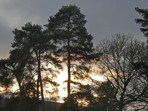 sunset castleholm