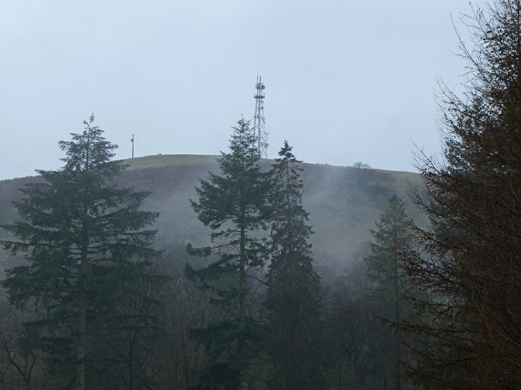 warbla misty view