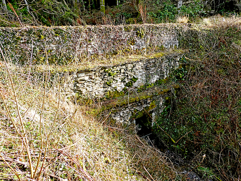 bridge on Longfauld track