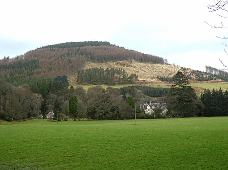 burnfoot and dowglen hill