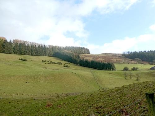 Burnfoot track view