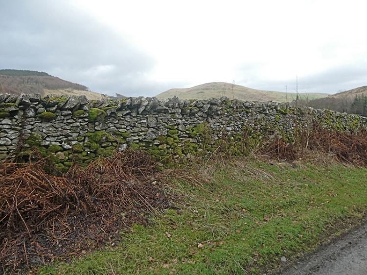 burnfoot track wall