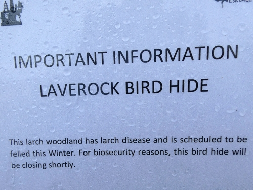 laverock hide notice