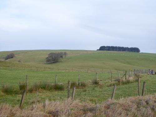 view at Grange