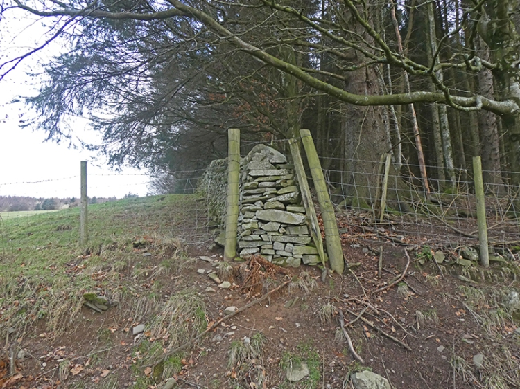 wall end westerhall track