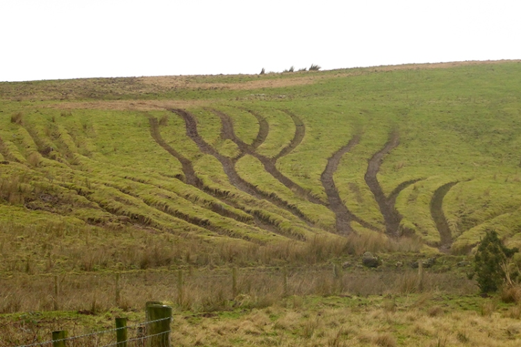 artistic tractor marks callister