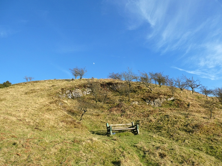 bench at whita well