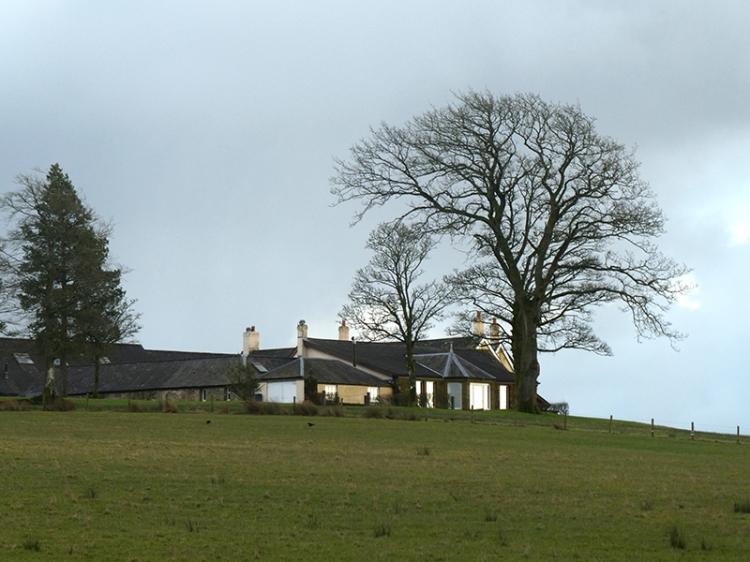 Byreburn Wood walk 5