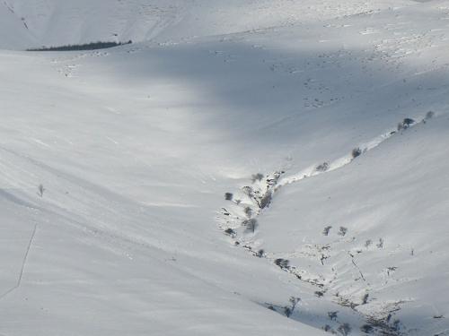 detail Bauchle Hill